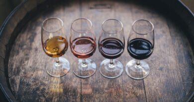 conseils sur le vin